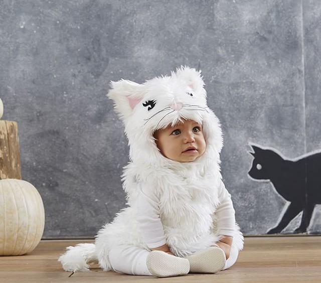 Puffy White Kitty