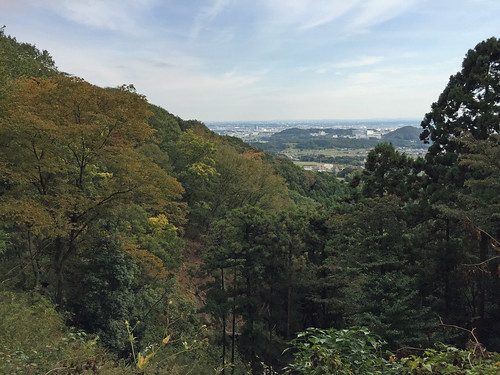 Scene from Yakushi Forest Road(Isehara, Japan)