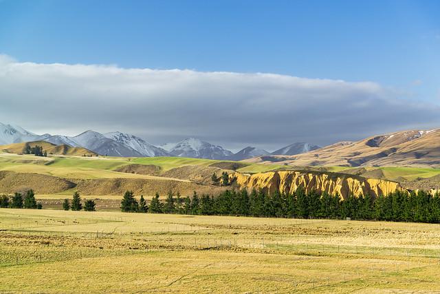 Central Otago Farmland ll