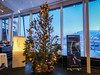 Christmas tree in the hotel