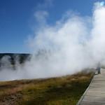 59- Yellowstone