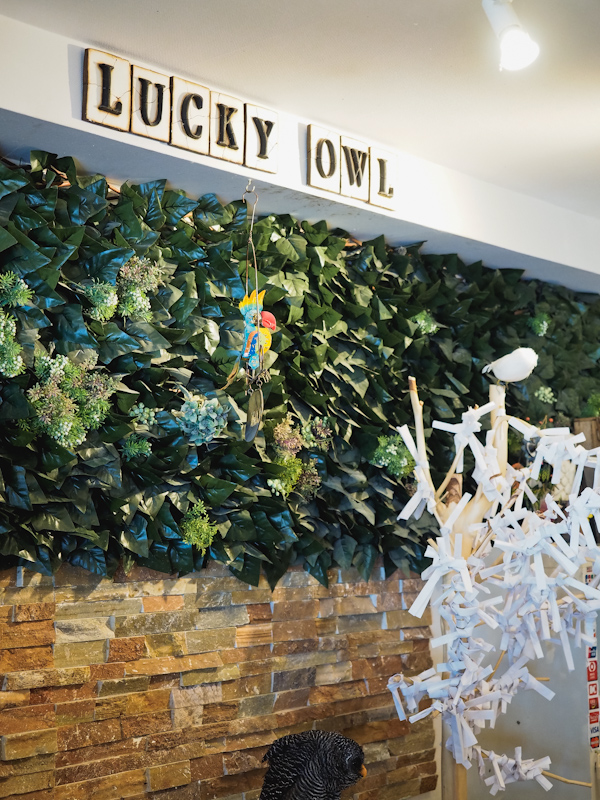 Lucky-Owl-Cafe-Osaka-31