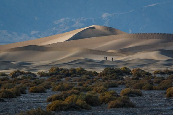 Stunning Light on the Dunes in Death Valley