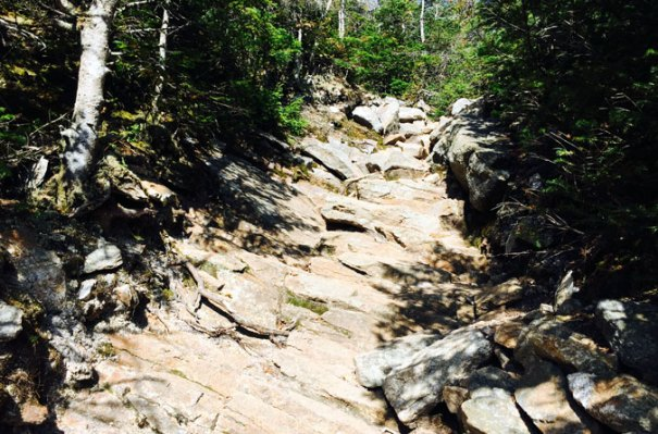 Osceola Descent Col
