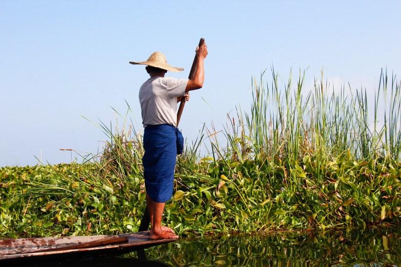 Lokalt liv på Inlesøen i Burma/Myanmar