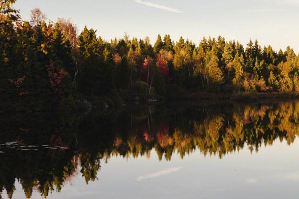 rockwood-park-saint-john-water