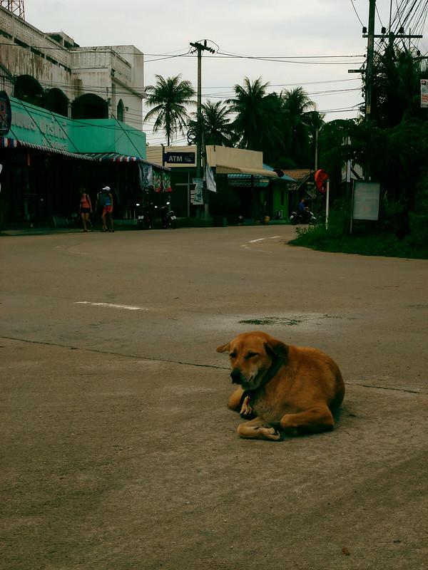 4 - Carnet de Thaïlande - 29 - Haad Chaloklum