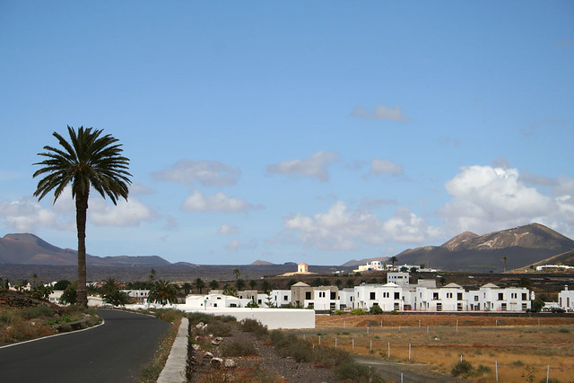 Lanzarote village with Palm tree