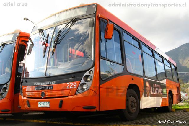 Transantiago - Redbus Urbano - Neobus Mega Low Entry / Mercedes Benz (MZ9907) (229)