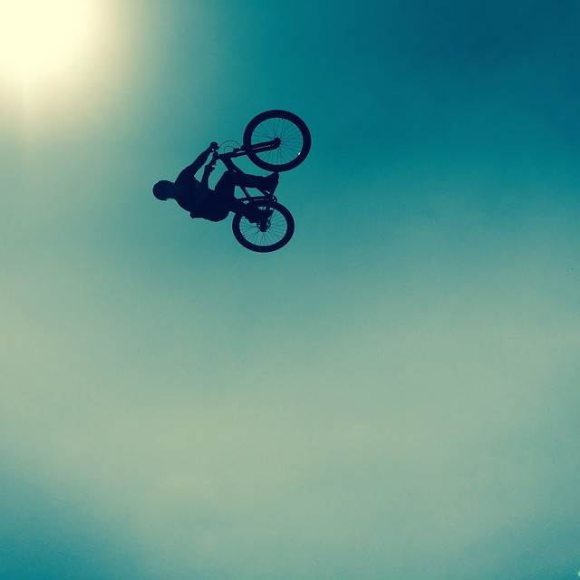 FISE 2015 #FISE #Montpellier #intheair