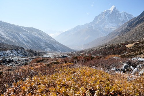 Autumn colors in the Chhukung valley