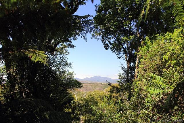 Parque Nacional Amboro 20151013
