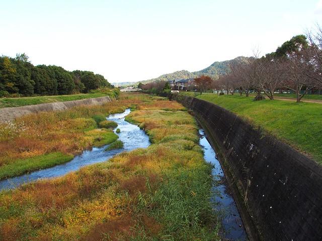 Oyamakawa (大山川)
