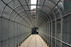Taylor-Southgate Bridge