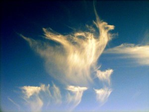 A photo of a cloud in an unusual shape