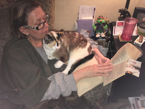 Read to your cat