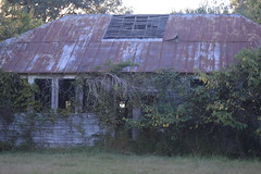029 Abandoned School