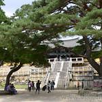 05 Corea del Sur, Gyeongju Bulguksa 0005