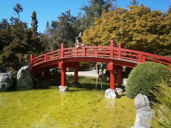 Red Bridge in the Friendship Garden