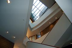 Vontz Center for Molecular Studies