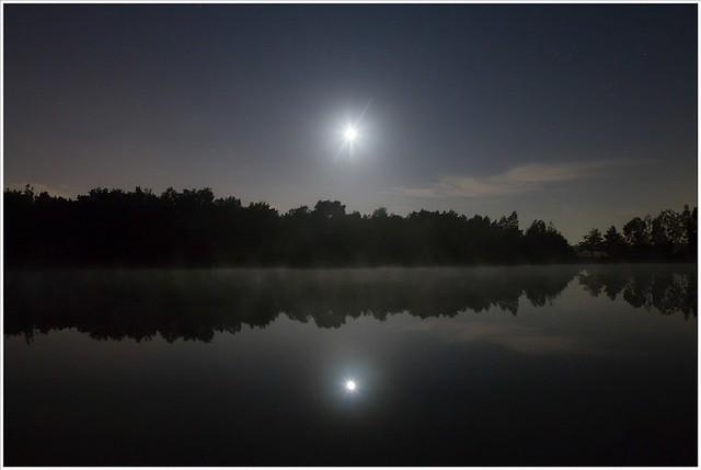 mist in het maanlicht (7D032030)