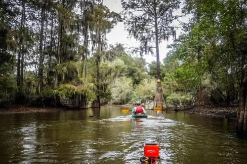 Sparkleberry Swamp with LCU-100