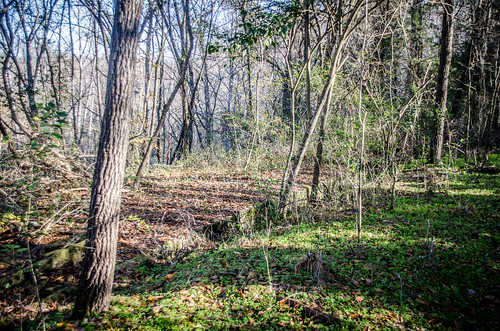Pacolet River Trail-052