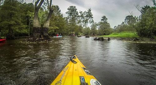 Sparkleberry Swamp with LCU-245