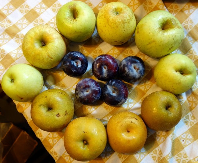 Homestead Creamery Week 13 Fruit Delivery