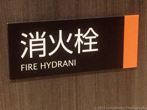 Hydrani