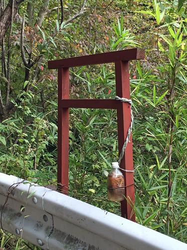 Torii at Yakushi Forest Road(Atsugi and Isehara, Japan)