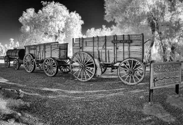 20 Mule Team Wagon Train