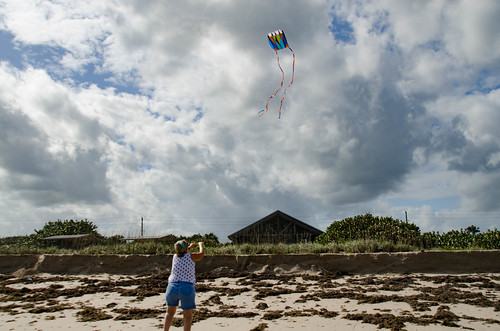 Kite Flying at Avalon Beach-002