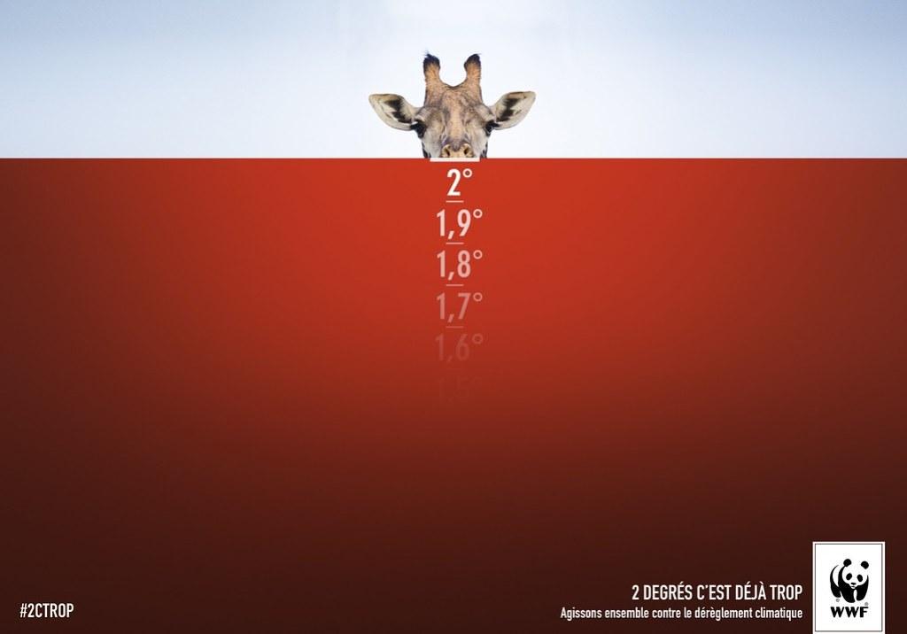 WWF - Giraffe