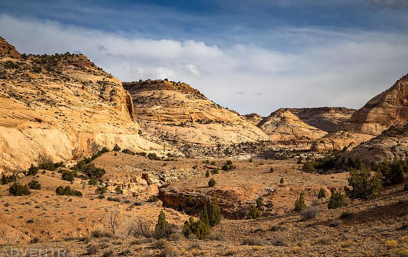 Saddle Horse Canyon