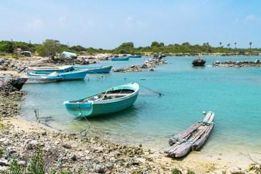 lust-4-life travel blog Sri Lanka Delft Island Jaffna-10