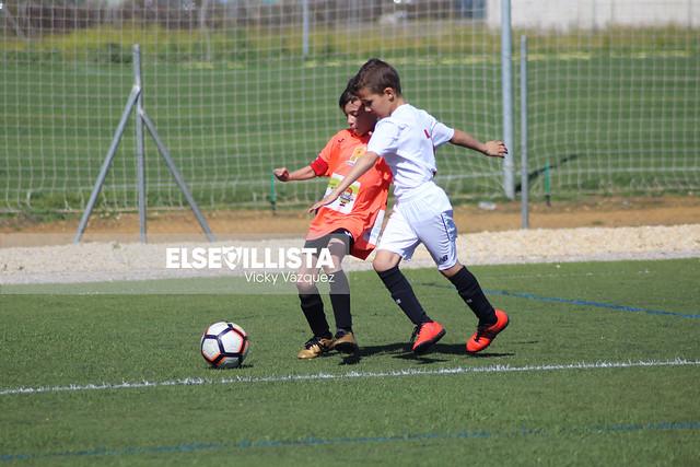 Sevilla FC - Guillena CF (4ª Andaluza Benjamín)