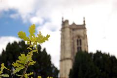 Marnhull churchyard