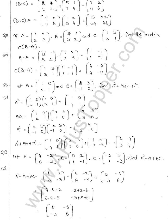 ml-aggarwal-icse-solutions-for-class-10-maths-chapter-9-matrices-11