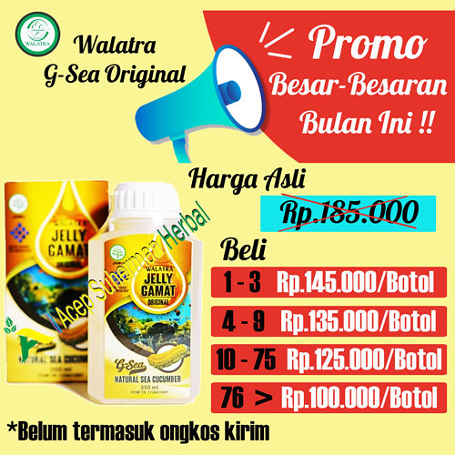 Walatra G-Sea Jelly Gamat Original