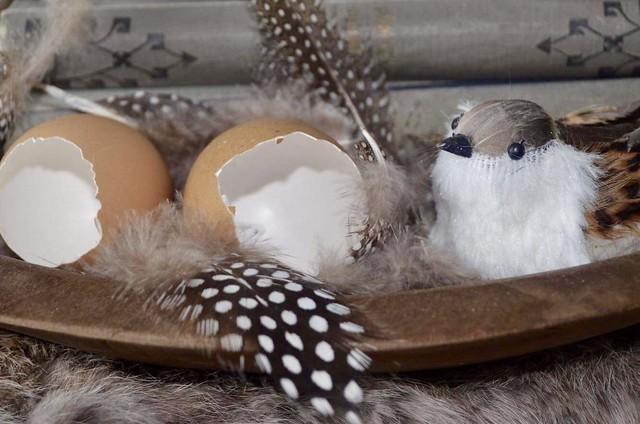 Houten schaal met eieren, veren, vogeltje