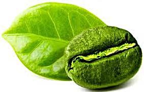 Harga Green Coffee Bean di Apotik