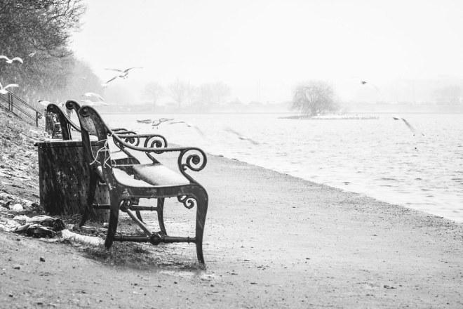 Benches Overlooking Sortedam Lake, Copenhagen