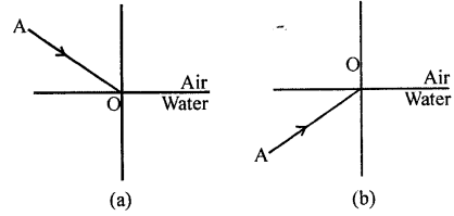 Selina Concise Physics Class 8 ICSE Solutions - Light energy 11.2