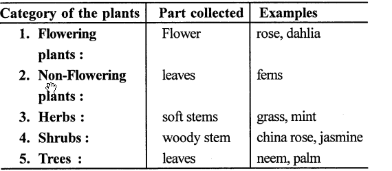 selina concise biology class 7 icse solutions classification of