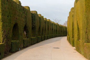 Uiteraard was ik voornamelijk naar Granada gereden voor de Alhambra.