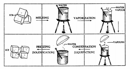 New Simplified Chemistry Class 6 ICSE Solutions - Water 3