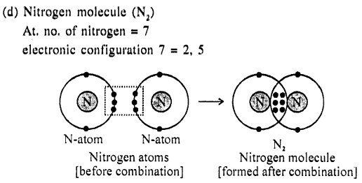 New Simplified Chemistry Class 9 ICSE Solutions Chemical