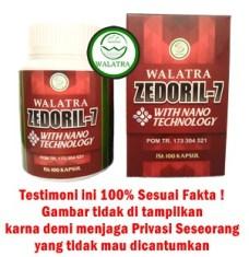 Obat Herbal Kanker Dan Tumor Zedoril 7