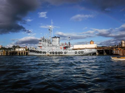 Bellingham Harbor with Moondance Kayaks-55